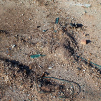 Überall findet man Müllreste im Boden © Foto: IPP (abs)