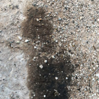 Ein Ölfleck? Wasser ist es nicht! © Foto: IPP (abs)